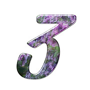 The number Three Part of a set of letters, Numbers and symbols of 3D Alphabet made with a floral image on white background