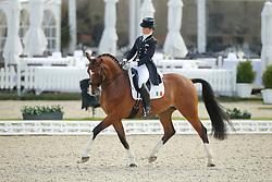 Reynolds Judy, (IRL), Zigal<br /> CDI Inter I<br /> CDIO Hagen 2015<br /> © Hippo Foto - Stefan Lafrentz