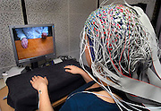Nederland, Nijmegen, 15-3-2007..Hersenonderzoek bij het NICI bij de Radboud universiteit. Dit onderzoek heeft tot doel een methode te ontwikkelen waarbij de hersenen een computer commando's geeft, waardoor bijvoorbeeld gehandicapten die geheel verlamd zijn toch een rolstoel kunnen besturen...Foto: Flip Franssen