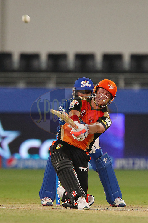 David Warner of the Sunrisers Hyderabad during match 20 of the Pepsi Indian Premier League Season 2014 between the Mumbai Indians and the Sunrisers Hyderabad held at the Dubai International Stadium, Dubai, United Arab Emirates on the 30th April 2014<br /> <br /> Photo by Ron Gaunt / IPL / SPORTZPICS