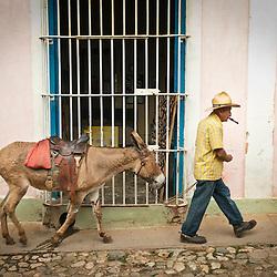 Old man with straw hat walking with his donkey , Trinidad, Sancti Spiritus, Cuba, Caribbean.
