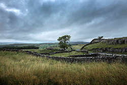 © Licensed to London News Pictures. 26/08/2015. Ribblehead, UK. Picture shows a dark & gloomy morning in the Yorkshire Dales first thing this morning. Photo credit: Andrew McCaren/LNP