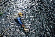 08649-P. A fly fisherman nets a large rainbow trout on the Little Snake River in Colorado.