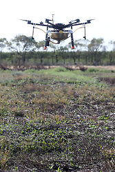 LOTTA CONTRO ZANZARE CON DRONE