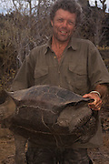 Pete Oxford & Galapagos Giant Tortoise (Geochelone elephantophus) for DNA analysis.<br /> Wolf Volcano, Isabela Island, GALAPAGOS ISLANDS<br /> ECUADOR.  South America<br /> In December 2008 a team of Galapagos National Park Guards, Scientiests and Vets spent 2 weeks on the volcano capturing 1663 Giant Tortoises to take blood samples and biometric data. The blood was sent to the USA for DNA analysis. Object to look for Pinta female for Lonesome George.  Distinct saddleback forms like Lonesome George found. Also Floreana genes were previously found. There seems to be a mixed gene pool possible from tortoises swimming ashore from ship wrecks etc.