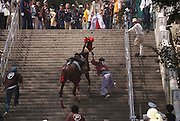 A horse that had failed to get over a mound-obstacle during the annual Tado Horse Festival is taken up to a Temple.