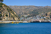 Avalon Harbor Catalina Island