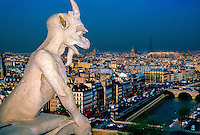 Gargoyle on the roof of the Notre-Dame Cathedral, Paris, France