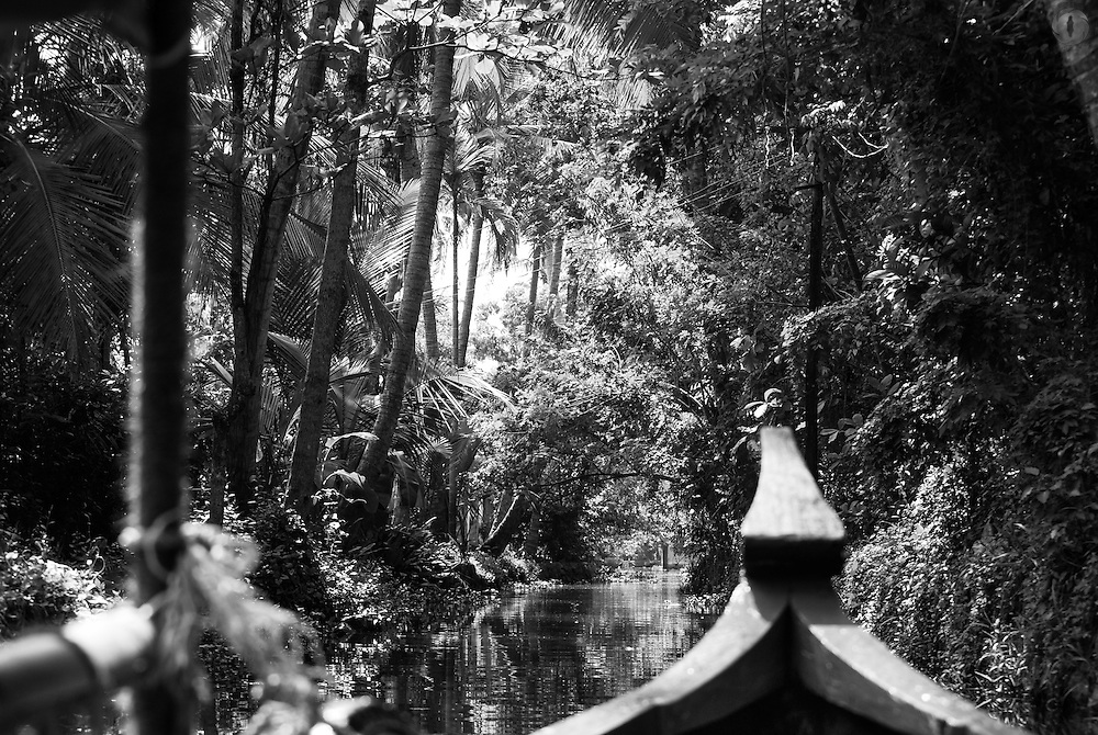 View from a boat on the backwaters of Alleppey in Kerala, India.