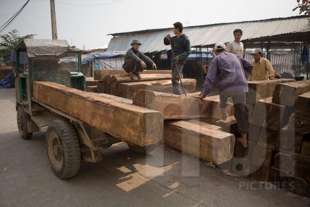 Workers carrying big piece of wood in the craft village of Dong Ky, specialized in wood furnitures manufacture. Vietnam, Asia