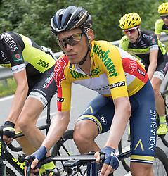 08.07.2017, Wels, AUT, Ö-Tour, Österreich Radrundfahrt 2017, 6. Etappe von St. Johann/Alpendorf nach Wels (203,9 km), im Bild // during the 6th stage from St. Johann/Alpendorf to Wels (203,9 km) of 2017 Tour of Austria. Wels, Austria on 2017/07/08. EXPA Pictures © 2017, PhotoCredit: EXPA/ Reinhard Eisenbauer