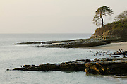 View of rocky sea shore and pelicans at early morning . Pacheca Island, Las Perlas Archipelago, Panama, Central America.