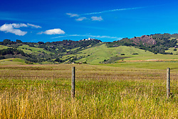 Open grazing field with Hearst Castle in the background, San Simeon, California, United States of America