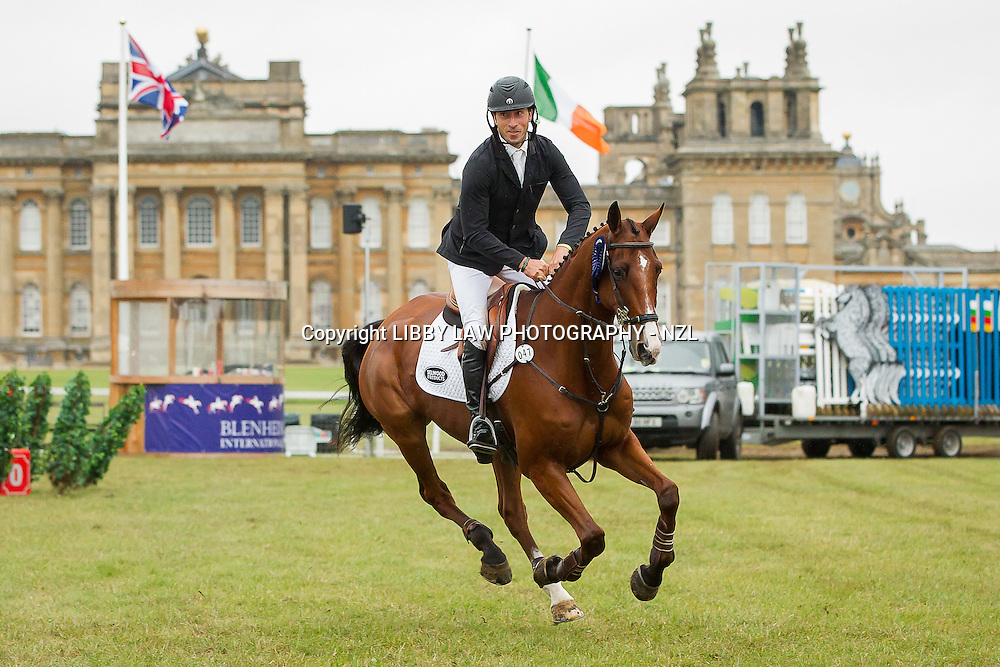 NZL-Tim Price (RINGWOOD SKY BOY) CCI3* SHOWJUMPING: FINAL-13TH: 2013 GBR-Fidelity Blenheim Palace International Horse Trial (Sunday 15 September) CREDIT: Libby Law COPYRIGHT: LIBBY LAW PHOTOGRAPHY - NZL