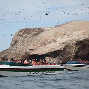 Tourists visit the Ballestas Islands, Paracas, Peru.
