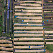 The drying tables at Rwacof Cooperative are shown in an aerial photograph. Photographed on Sunday, April 30, 2017.  (Joshua Trujillo, Starbucks)