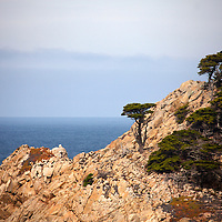 USA, California, Monterey. Coastline of 17-Mile Drive.