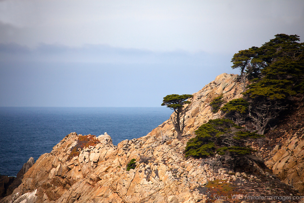USA, California, Monterey. Coastline of 17-Mile Drive.