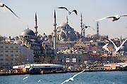 Istanbul. Suleyman Mosque (Su?leymaniye Camii).