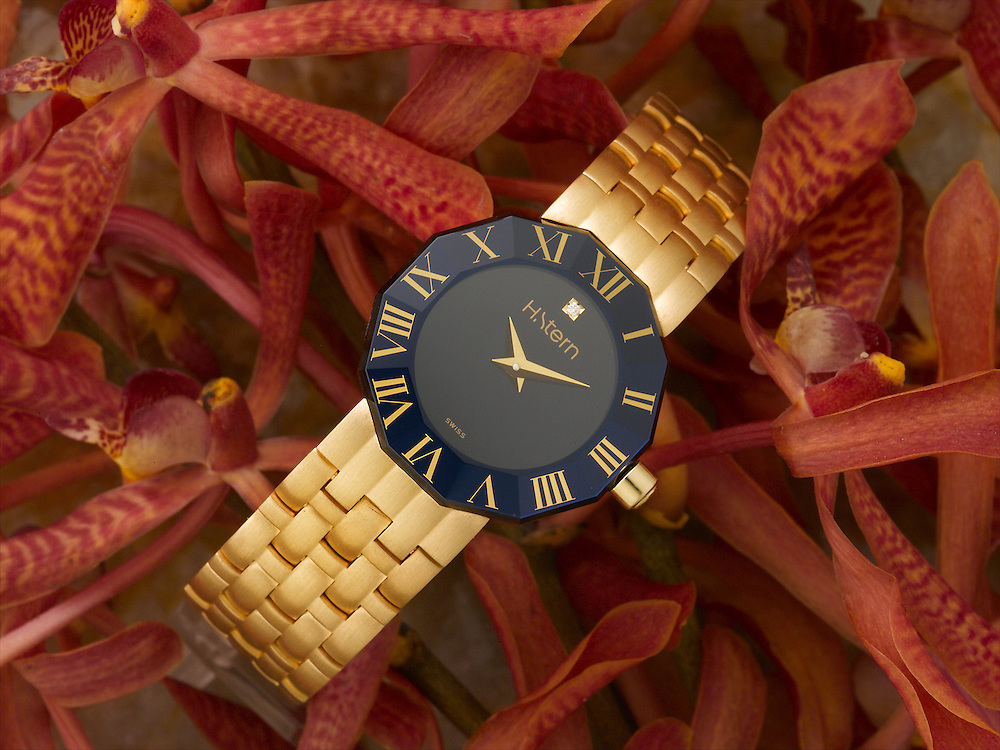 H Stern Watch blue with red flowers