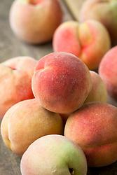Peach 'Peregrine' - Prunus persica 'Peregrine' AGM