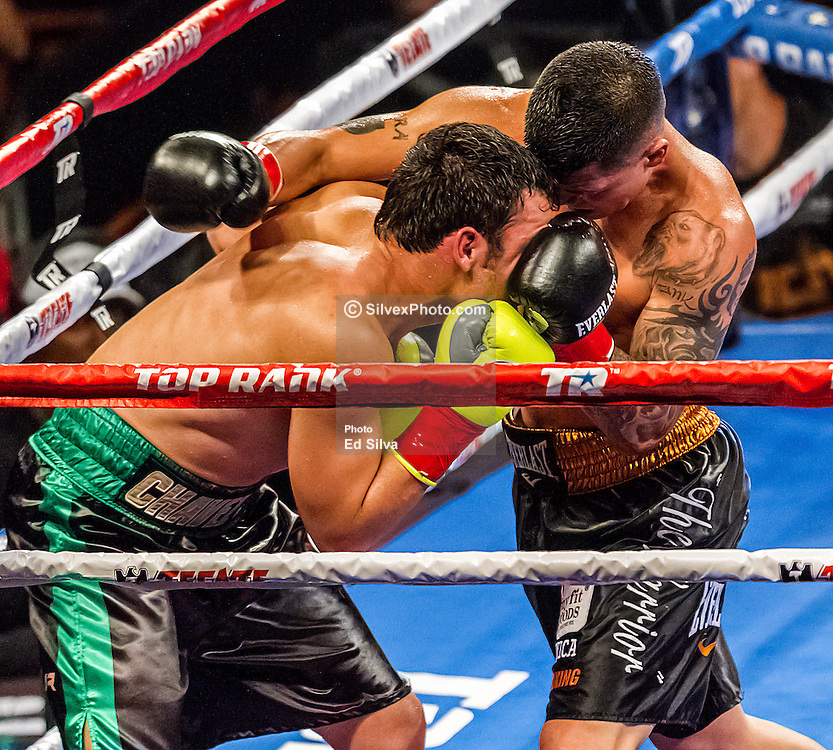 CARSON, California/USA (Saturday, Sept 28 2013) - Pro boxer Julio Cesar Chavez Jr (47-1-1, 32 KOs) (black trunks with green stripes) trade punches with pro boxer Bryan Vera (24-7-0, 14 KOs) (black trunks with yellow belt) during their bout at the StubHub Center in Carson, CA. Chavez overcame weight struggles and a lively challenge from the unsung Vera to get the decision on all three judges' scorecards. Judge Carla Caiz saw it 96-94, Marty Denkin scored it 97-93, and Gwen Adair favored Chavez 98-92, giving Vera only the eighth and ninth rounds. 28th September 2013. Fees must be agreed for image use. Byline, credit, TV usage, web usage or linkback must read: SILVEXPHOTO.COM.