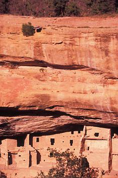 Mesa Verde Cliff Palace, Mesa Verde National Park, Four Corners