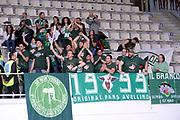 DESCRIZIONE : Trento Lega A 2015-2016 Dolomiti Energia Trentino Sidigas Avellino <br /> GIOCATORE : tifosi<br /> CATEGORIA : tifosi<br /> SQUADRA : Sidigas Avellino<br /> EVENTO : Campionato Lega A 2015-2016<br /> GARA : Dolomiti Energia Trentino Sidigas Avellino <br /> DATA : 13/02/2016<br /> SPORT : Pallacanestro<br /> AUTORE : Agenzia Ciamillo-Castoria/Max.Ceretti<br /> GALLERIA : Lega Basket A 2014-2015<br /> FOTONOTIZIA : Trento Lega A 2015-2016 Dolomiti Energia Trentino Sidigas Avellino <br /> PREDEFINITA :