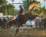 Stock Saddle Bronc