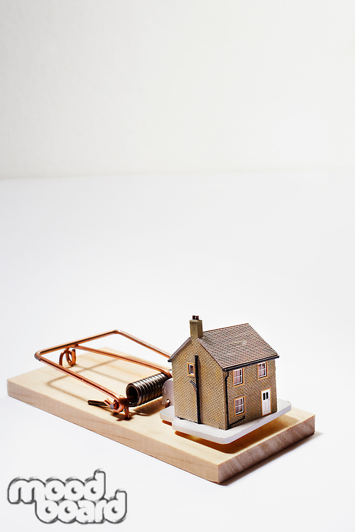 Model house as bait on mousetrap