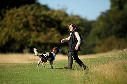 © Licensed to London News Pictures. 09/10/2016. London, UK. A dog walker in Richmond Park on a bright autumnal morning. Photo credit: Ben Cawthra/LNP