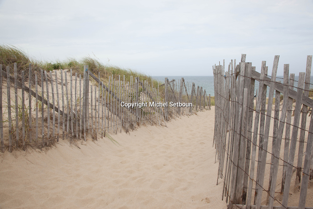 United States. Cape Cod in Massachussets. seashore in cape Cod,