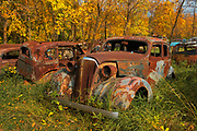 Vintage old vehicle in wrecking yard