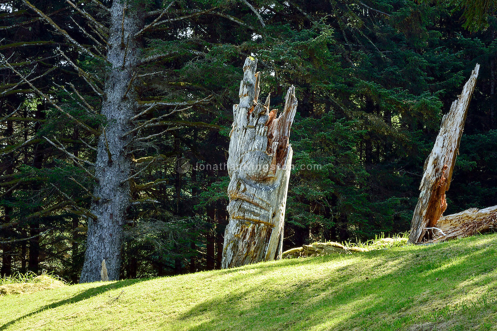 Mortuary pole, the grave of a high status person, carved with the crest of the deceased at UNESCO world heritage site, SGang Gwaay Llnagaay, Haida Gwaii, British Columbia.  A cavity at the top of the pole is where the remains of the deceased were placed.