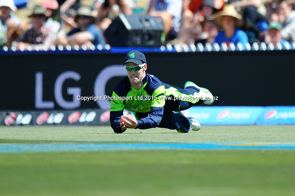 George Dockrel of Ireland takes a catch during the 2015 ICC Cricket World Cup match between West Indies and Ireland. Saxton Oval, Nelson, New Zealand. Monday 16 February 2015. Copyright Photo: Chris Symes / www.photosport.co.nz