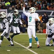 2014 Dolphins at Jets
