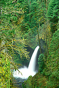 Metlako Falls on Eagle Creek, Columbia River Gorge National Scenic Area, Oregon