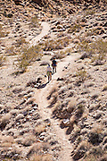 A couple walking the trail at Fortynine Palms Oasis in the Mojave desert outside of Twentynine Palms, California.