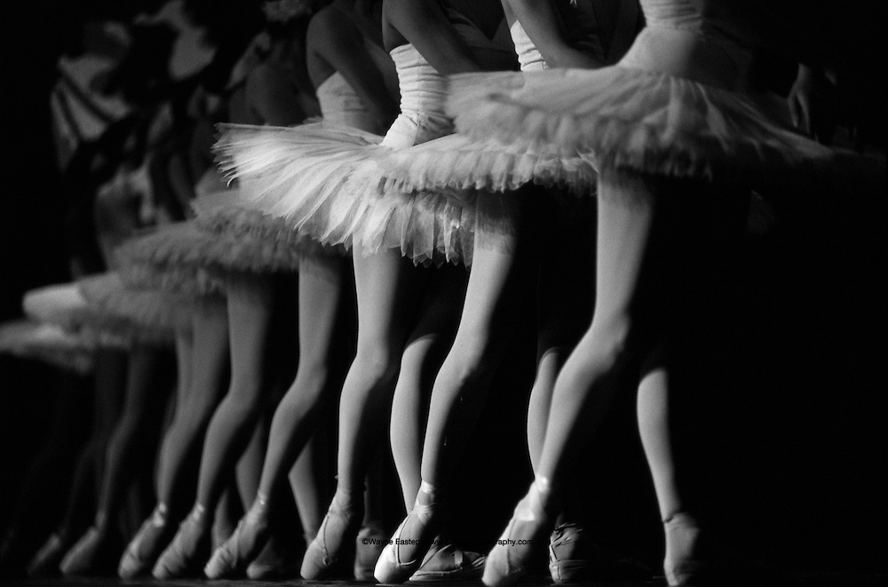Ballerinas performing in Swan Lake