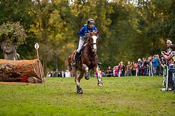 Lips Tim, NED, Herby<br /> Mondial du Lion - Le Lion d'Angers 2019<br /> © Hippo Foto - Dirk Caremans<br />  19/10/2019