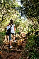 Trilha para Praia dos Naufragados. Florianópolis, Santa Catarina, Brazil. / Trail to Naufragados Beach. Florianopolis, Santa Catarina, Brazil.