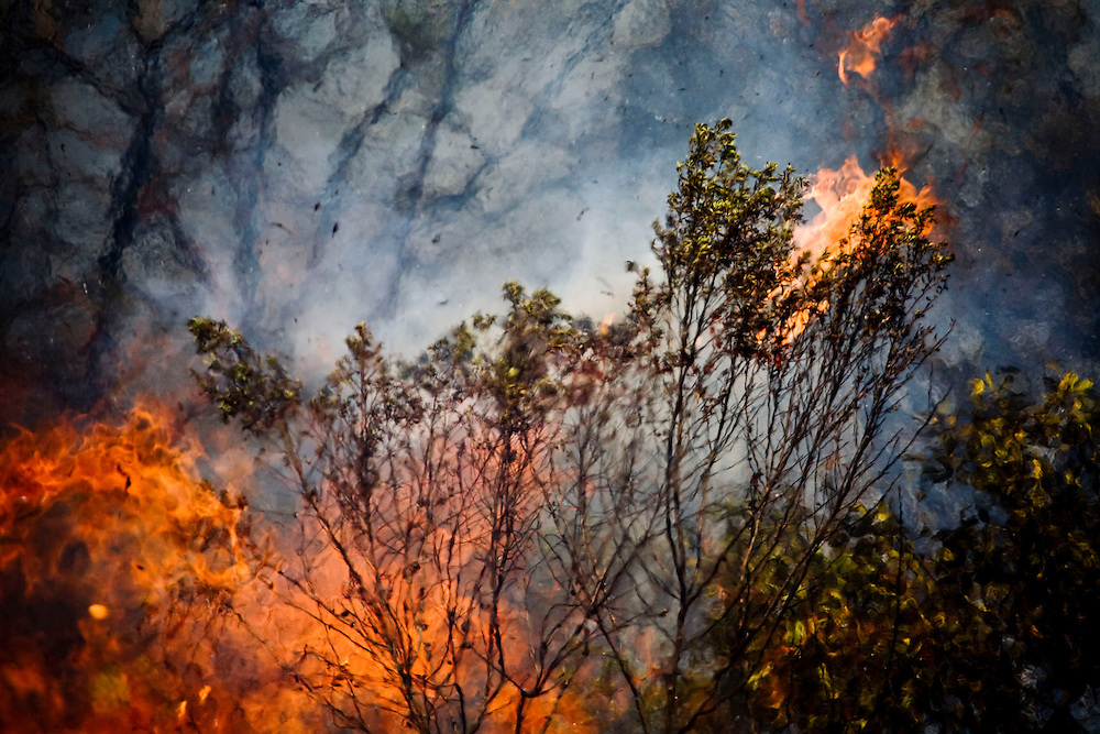 Nova Lima_MG, Brasil...Incendio no Parque Estadual Serra do Rola Moca...The fire in the State Park Serra do Rola Moca...Foto: JOAO MARCOS ROSA / NITRO