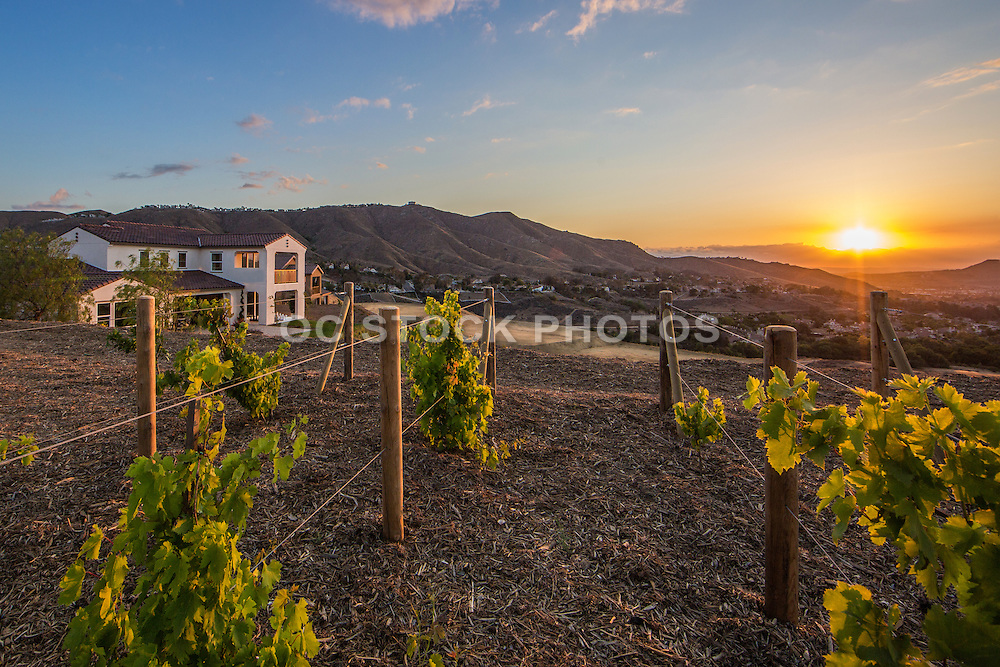 New Home Development with a Sunset View Over the Mountains