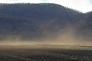 Pine Island, New York - Views of the Black Dirt farming region in Orange County on Nov. 24. 2013.