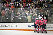 Pittsford fans celebrate a third period goal against McQuaid during the annual Pink the Rink game at RIT's Gene Polisseni Center in Henrietta on Saturday, February 4, 2017.