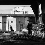 Libye, Misrata le 17-09-11 Daily life in Misrata. Après avoir subi un siège de plusieurs mois, les habitants de la rue de Tripoli reviennent peu à peu chez eux. Certains ont tout perdu et ne savent pas de quoi leur avenir sera fait.