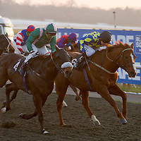 El Libertador ridden by Jimmy Fortune and Celtic Charlie ridden by Ian Mongan dead heat for 1st in the 4.30 race