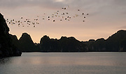 Sunrise - Ha Long Bay - Vietnam