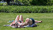 A couple lies on the grass in Lincoln Park with a dog in-between them