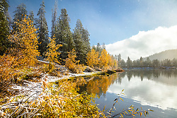 """""""Snowy Coldstream Pond 5"""" - Photograph of a snowy shoreline and Fall colors at Coldstream Pond in Truckee, California."""